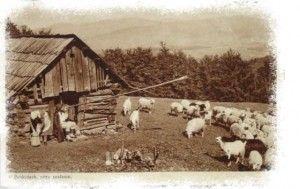 chata wołoska