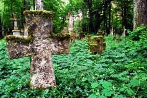Wyróżnienie: Pozostałości cmentarza greckokatolickiego na terenie nieistniejącej już wsi Brusno Stare w gminie Horyniec-Zdrój.