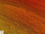 """Uzyskany dzięki LIDAR-owi Numeryczny Model Terenu. Widać biegnące fałdy znaczące przebieg kolejnych warstw wapieni o różnej odporności. W południowej części rozlokowane są zgodnie z ich biegiem pozostałości pradziejowych kopalń krzemienia pasiastego """"Korycizna"""". Na północ od nich świetnie widać trzy skupiska pozostałości nowożytnych łomów wapienia. Na większości badanego obszaru widać też ślady pól ornych zapewne z początków ubiegłego stulecia."""