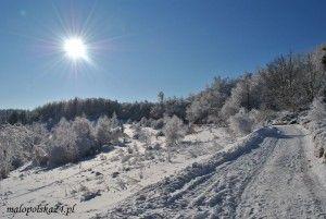zima14