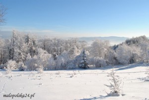 zima15