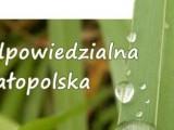 Odpowiedzialna Małopolska