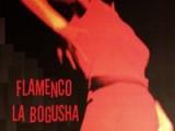 Gorące rytmy Flamenco w Krakowie