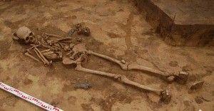 Doskonale zachowany szkielet wojownika. Fot. dzięki uprzejmości Muzeum im. Stanisława Staszica w Hrubieszowie