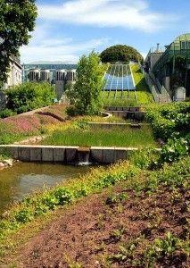 Jednym z najbardziej znanych w Polsce zielonych dachów jest ogród na dachu Biblioteki Uniwersyteckiej w Warszawie. Jest to jeden z największych ogrodów dachowych w Europie. Rozciąga się na powierzchni ponad 1 ha.