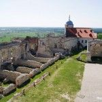 zamek w Janowcu