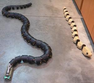 Dwa roboty naśladujące budową i sposobem poruszania się węże. Foto: Wikipedia.