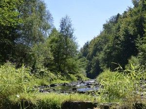 Wieprzówka, gmina Andrychów