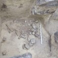 W Kleczanowie (województwo świętokrzyskie) archeolodzy przebadali nietypowy grób należący do przedstawicielki społeczności tzw. kultury złockiej z epoki środkowego neolitu. Na jej szkielecie widoczne są wyraźnie zmiany chorobowe, m.in. nogi o […]