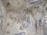 Widok ogólny komory grobowej. Foto: M. Florek