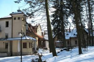 Pałac w Pełkiniach