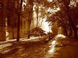 Krakowskie Planty. Foto: Wikipedia.
