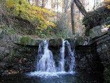 Potok Pracica i jeden z większych wodospadów, jakie tworzą się w naturalnym korycie potoku. Obecny sposób regulacji brzegów potoków, stanowi dla takich miejsc szczególne zagrożenie. Foto: Jan Zieliński.