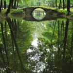 Zamek w Suchej Beskidzkiej,park